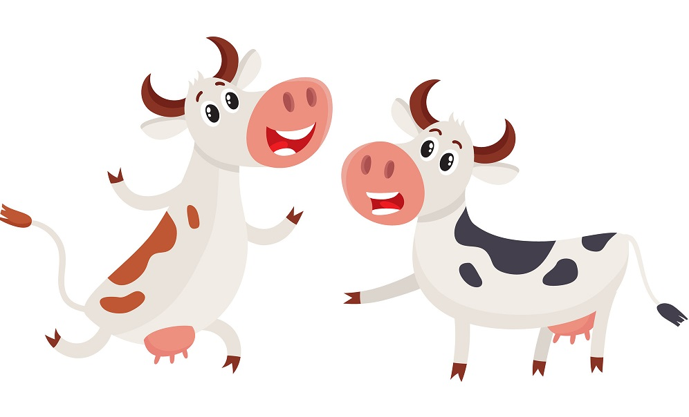 Two cows, one ringing a bell and another running